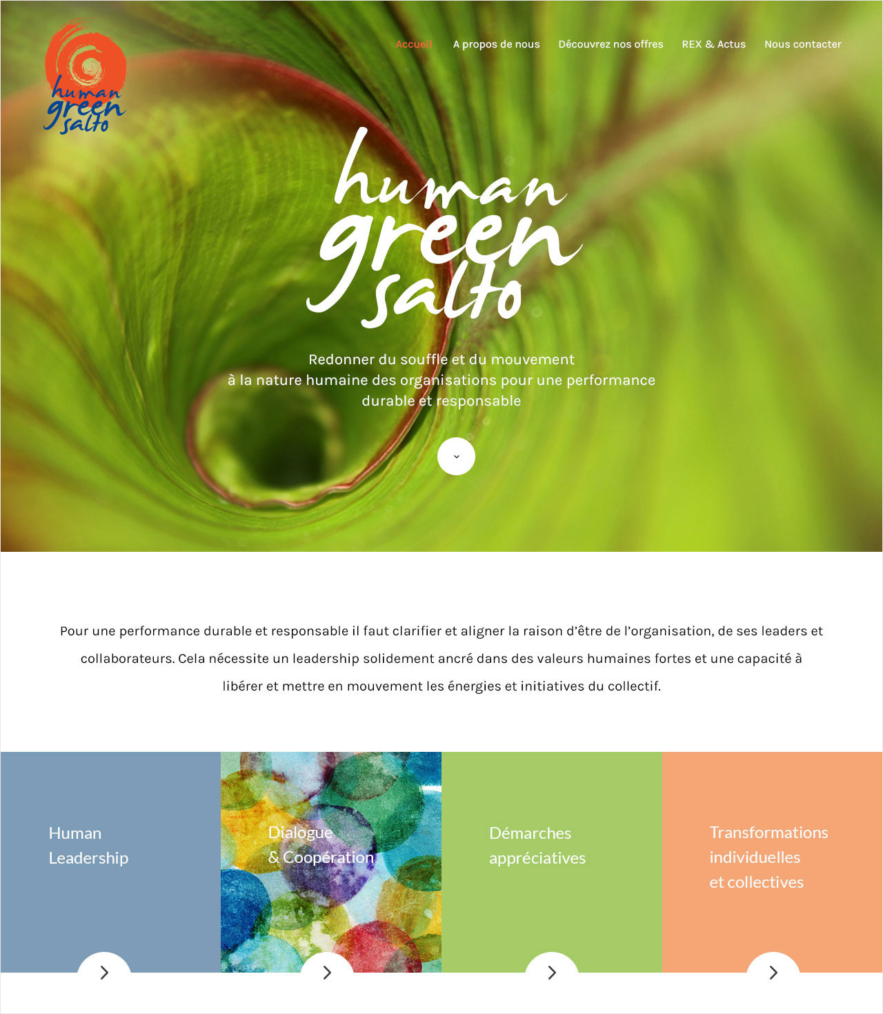HumanGreenSalto-Site-Img3
